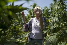Marijuana Tourists Find Morocco to Be a Chill Joint