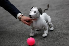 Paw Patrol: Sony Offers Aibo Robocop Dog to Guard Your Home