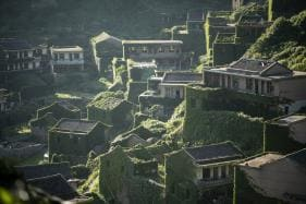 Going Green: Mother Nature Runs Wild On China's Emerald Isle