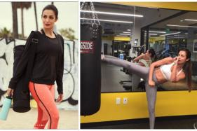 Malaika Arora' Instagram Is a Delight For Fitness Enthusiasts; Watch Videos