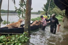 Chennai Boys Reach Kottayam, Rescue 19 Dogs Stranded​ in Kerala House
