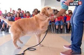 Making Kids Love Dogs, One School At A Time