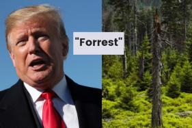 'Forrest Trump': The US President's Latest Typo Has Inspired a lot of Memes on Twitter