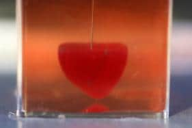 PICS: Israeli Scientists Unveil World's First 3D-Printed Heart