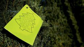 Christmas Tree - Part 2