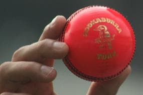 BCCI in Talks With British Ball Manufacturers for Supply of Pink Balls