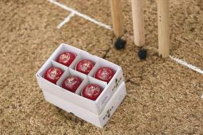 Australia Turn to Dukes Balls for Shield to End Away Ashes Misery