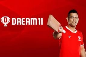 Dream11 Wins IPL 2020 Title Sponsorship for Rs 222 Crores