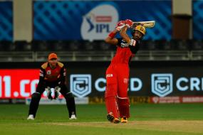 IPL 2020: SRH vs RCB, IPL 2020 Eliminator: Abu Dhabi Weather Forecast and Pitch Report for Sunrisers Hyderabad vs Royal Challengers Bangalore