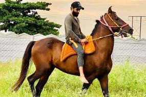 'Back to the Place Where I Feel Safe', Ravindra Jadeja Shares Pictures of His Horses on His Return