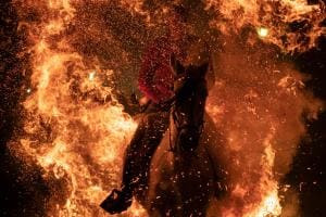 Shocking Visuals! Horses Ridden Through Fire For Purification in Spain