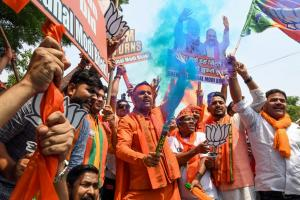 PICS: BJP Workers Celebrate NDA's Victory in Lok Sabha Elections 2019