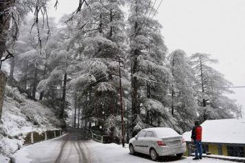 Snowfall News: Latest News and Updates on Snowfall at News18