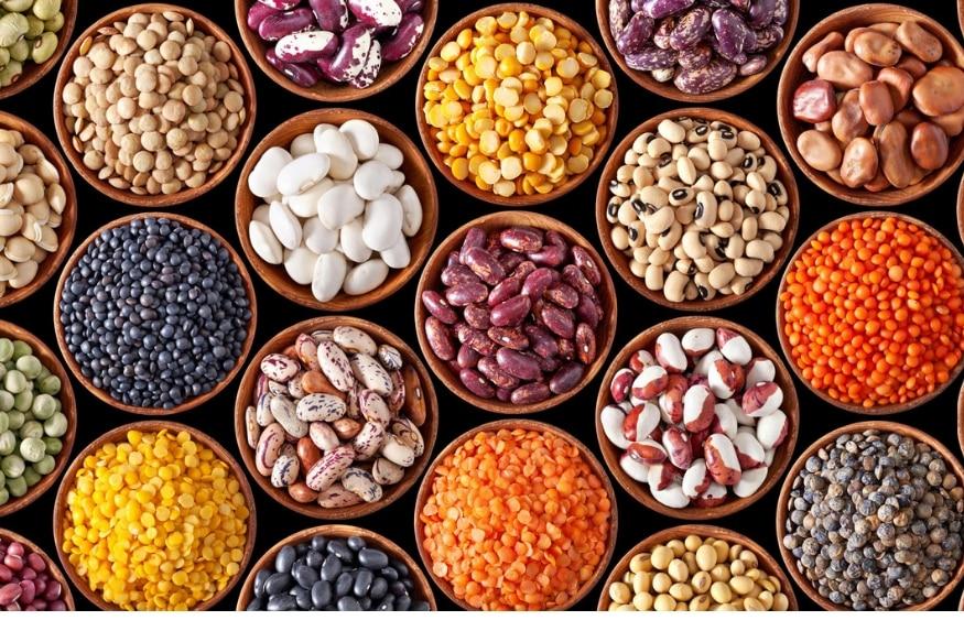 व्हिगन डाएटमध्ये प्रोटीन, मिनरल आणि कॅल्शियमसाठी डाळी हाच स्रोत असतो. सर्व प्रकारच्या डाळी, कडधान्य व्हिगन डाएट घेणाऱ्यांनी नियमित प्रमाणात आहारात घेणं आवश्यक ठरतं.