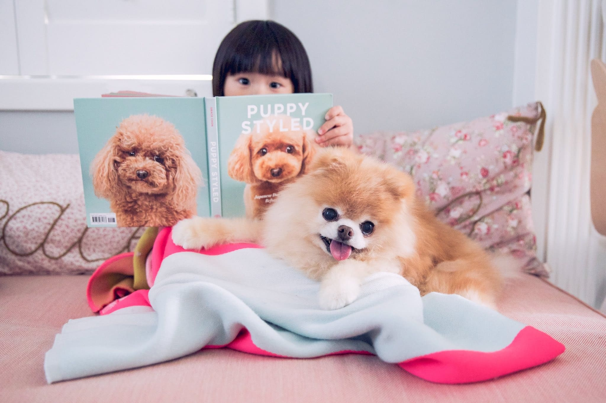 Boo हा एक सेलिब्रेटीच झाला होता. इतंच काय Boo: The Life of the Worlds Cutest Dog आणि Boo: Little Dog in the Big City अशी दोन पुस्तकेही त्याच्यावर प्रकाशित झाली आहेत.