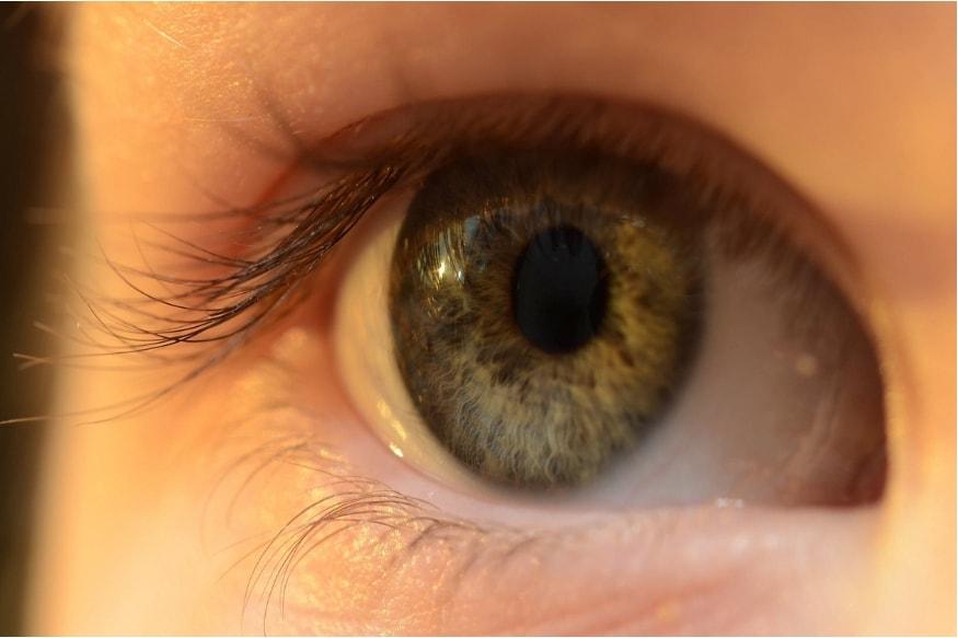सध्या लोक सुंदर दिसण्यासाठी कॉन्टॅक्ट लेन्सचा मोठ्या प्रमाणात वापर करतात. काही लोकांना चश्मा वापरायचा नसतो म्हणून ते कॉन्टॅक्ट लेन्स वापरतात. पण, तुम्हाला माहीत आहे का की हे कॉन्टॅक्ट लेन्स तुमच्या डोळ्यांसाठी घातक आहेत.