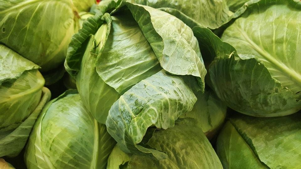 5 हजारांपेक्षा जास्त प्रजाती या किड्यांच्या असल्याचं सांगण्यात येत आहे. त्यामुळे जे आपल्या शरीराला हानिकारक आहे हे खाणं टाळा.