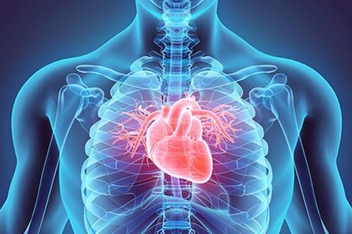 या सवयींमुळे अनेकजण होतात हृदय विकाराचे शिकार