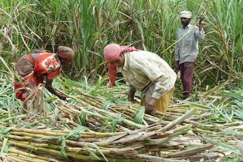 'या' योजनेअंतर्गत शेतकऱ्यांना मिळाली 62 हजार कोटींची मदत, लॉकडाऊनच्या परिस्थितीतही विशेष आर्थिक पॅकेज