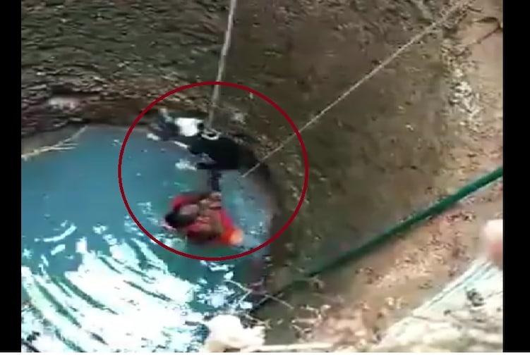 VIDEO : लेडी स्पायडरमॅन! जीवाची बाजी लावून महिलेने विहिरीतून श्वानाला वाचवलं