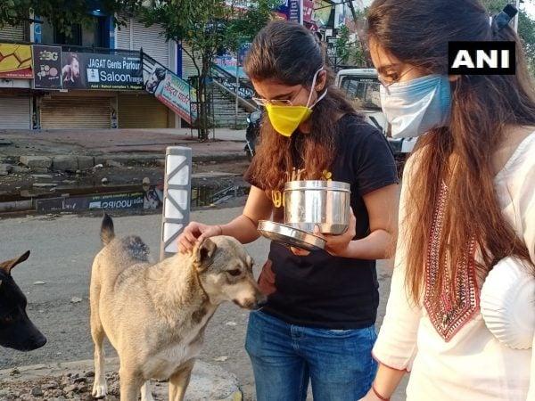 नागपुरात पुन्हा एकदा भूतदया आणि प्राणीप्रेमाचं दर्शन घडलं आहे. रस्त्यावरील कुत्रे उपाशी राहात असल्यानं दोन तरुणींनी या कुत्र्यांना खायला दिलं आहे.