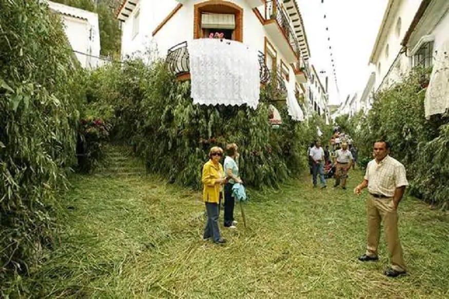 जहारा डी ला सिएरामध्ये जाण्यासाठी आता एकच रस्ता सुरु आहे. या ठिकाणी फक्त एकच पोलिस अधिकारी तैनात करण्यात आला आहे.