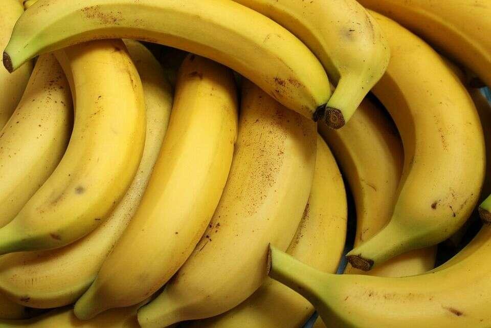 केळं हे फायबरनी युक्त असतं. रोज केळं खाल्ल्यानं कफ काही प्रमाणात कमी होतो. याशिवाय केळं हे पचनक्रियेत महत्त्वाची भूमिका बजावतं.