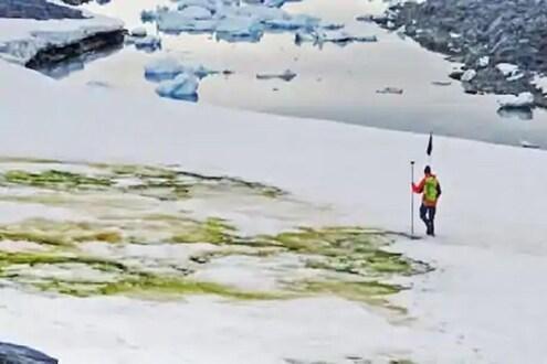 निसर्गाने बदलला रंग; अंटार्क्टिकातील डोंगरावरील पांढऱ्या बर्फाचा रंग हिरवा झाला
