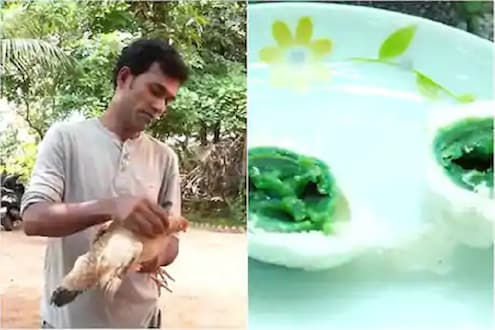बाहेरून पांढरं, आतून हिरवं...कोंबड्यांनी चक्क दिली हिरवी अंडी; तुम्ही कधी पाहिलीत का?