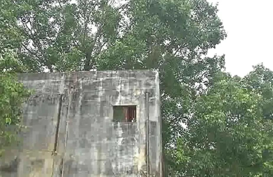 या घराला पाहून अनेकांना प्रश्न पडला आहे घरात झाड आहे की झाडावर घर. हे घर डॉ मोतीलाल केशरवानी यांचं आहे. 28 वर्षांपूर्वी त्यांनी हे घर आपल्या मित्राच्या मदतीनं बांधलं.तेव्हापासून हे झाडं आजपर्यंत सुरक्षित आहे. याला कोणीही धक्का लावू शकलं नाही.