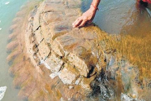 चमत्कार! नदीतून वर आलं लुप्त झालेलं पुरातन मंदिर; महानदीत सापडला 500 वर्षांपूर्वीचा वारसा