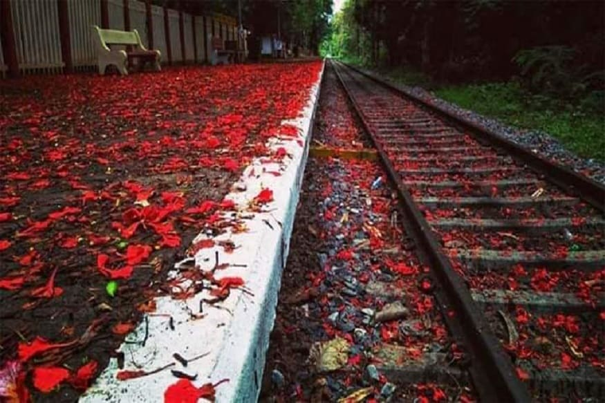 हा फोटो पाहिल्यानंतर एखाद्या फिल्ममधील किंवा परदेशातील रेल्वे स्टेशन असावं असंच प्रत्येकाला वाटेल. मात्र हे कोणत्या फिल्ममधील किंवा परदेशातील नव्हे तर भारतातील रेल्वे स्टेशन आहे.