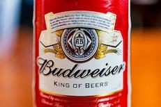FACT CHECK - Budweiser कर्मचारी 12 वर्षे बिअर टँकमध्ये लघवी करत होता?