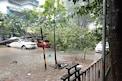PHOTOS: मुंबईत मुसळधार पावसाचा कहर; रस्ते गेली पाण्याखाली तर अनेक वृक्ष भुईसपाट