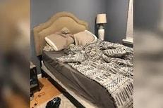 हे चॅलेन्ज घेऊनच दाखवा, 10 सेकंदात या फोटोत लपलेला कुत्रा शोधू शकता का?