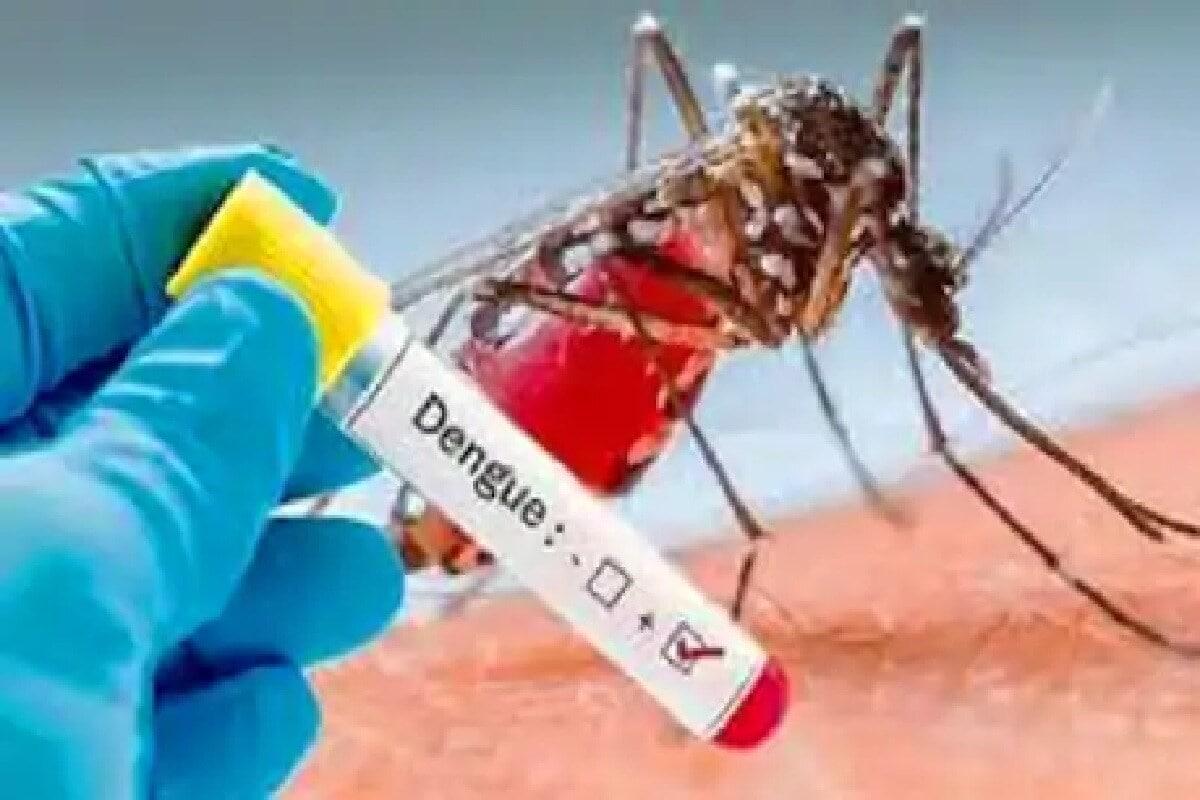 दरवर्षी पावसाळ्यात डासांमुळे पसरणारे आजार पसरतात. अशात दिल्लीतल एका रुग्णालयातून येणाऱ्या रिपोर्टमुळे डॉक्टरांची चिंता वाढली आहे. एकीकडे कोरोनापासून लोकांचा वाचवणे हे एक आव्हान असताना दुसरीकडे मलेरिया, डेंग्यू आणि लेप्टोस्पायरोसिस सारख्या संसर्गापासूनही बचाव करावा लागणार आहे.