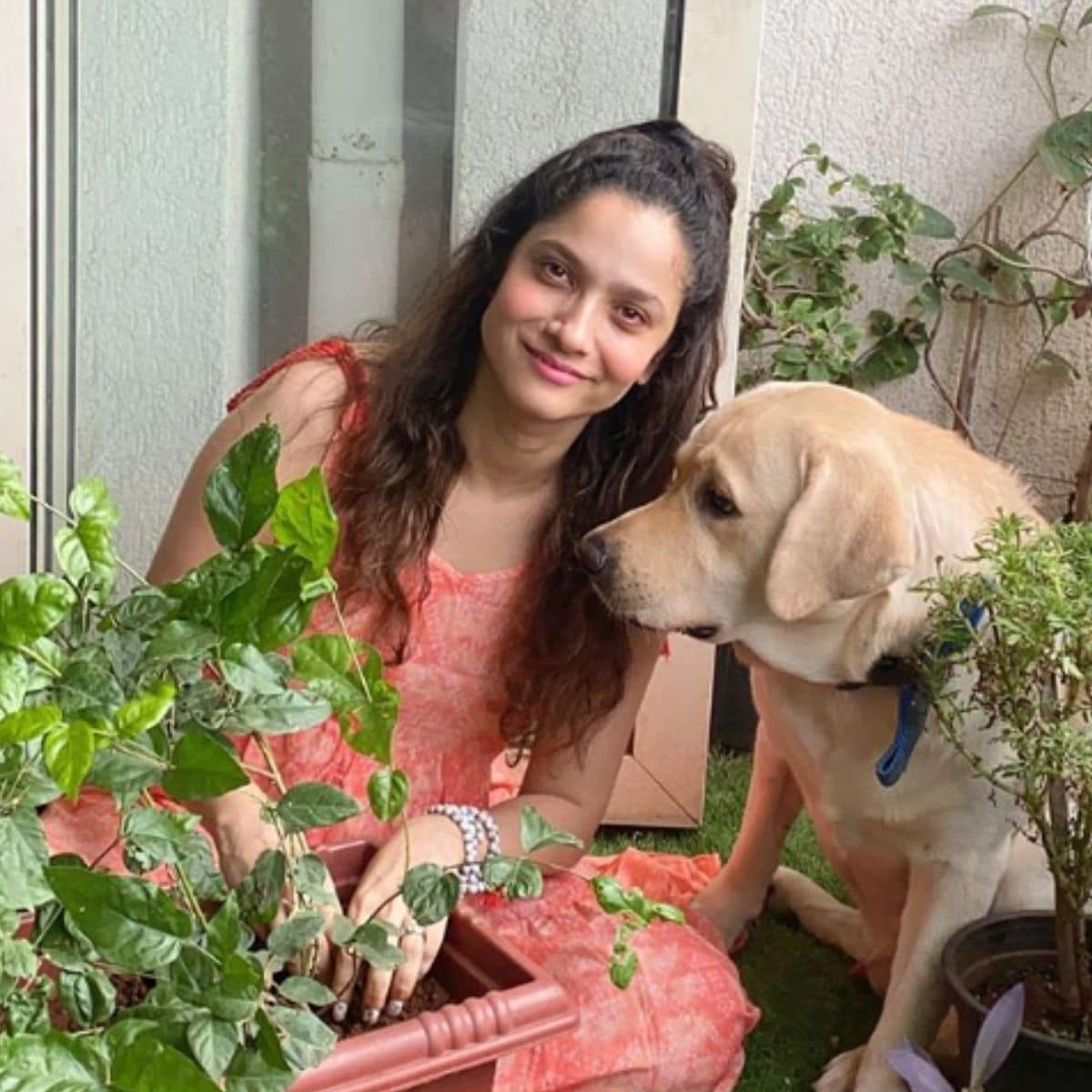 अंकिता लोखंडे (Ankita Lokhande) सोशल मीडिया सक्रिया असते. यापूर्वी अंकिताने इंस्टाग्राम अकाउंटवर गार्डनिंग करीत असतानाचे फोटो शेअर केले होते. ज्यामध्ये ती आपल्या डॉगीसोबत झाडं लावताना दिसत आहे. (photo credit: instagram/@lokhandeankita)