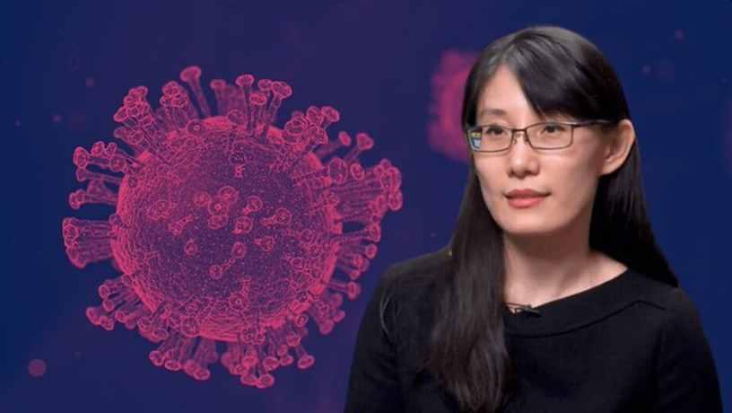 कोरोनाच्या विषाणूबाबत जगभरात अनेक मतमतांतर आहेत. आता चीनचे प्रसिद्ध व्हायरॉलॉजिस्ट डॉ. ली-मेंग यान यांनी असा दावा केला आहे की कोरायना विषाणू दोन वटवाघळांपासून तयार करण्यात आला आहे. हा नैसर्गिक विषाणू नसून तो तयार करण्यात आल्याचा दावाही यापूर्वी त्यांनी केला होता.