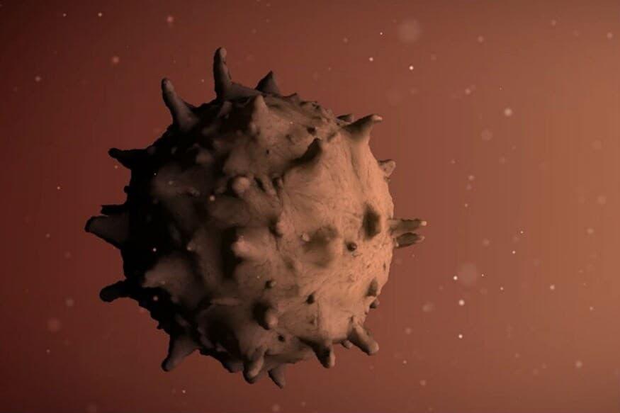 कोरोनाव्हायरसला मानवी शरीरात हल्ला करण्यासाठी लाइजोसोमल प्रोटीज कॅथेप्सीन एल आणिएप्रो हे दोन प्रोटिन आवश्यक असतात.
