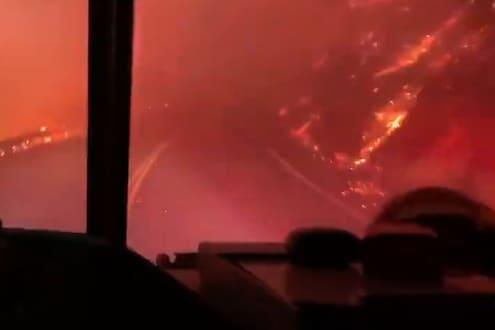 सिनेमातला सीन नाही तर...! चहूबाजूंनी आगीनं वेढलेल्या जंगलातून जवानानं चालवली गाडी, पाहा थरारक VIDEO