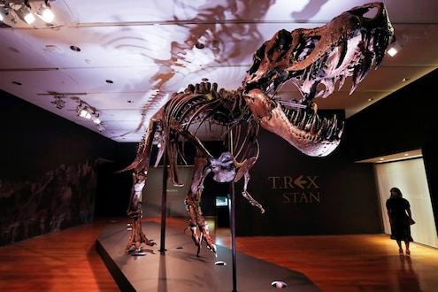 OMG! ज्युरासिक वर्ल्डमधील डायनासॉरच्या T-Rex Fossil ची तब्बल 2,33,20,49,820 कोटी रुपयांमध्ये विक्री