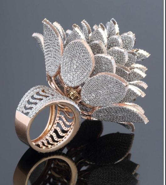 या अंगठीची गिनीज बुकमध्ये नोंद होण्याचं कारण म्हणजे त्यावरील हिरे. एकाच अंगठीवर तब्बल7801 हिरे बसवण्यात आले आहेत.