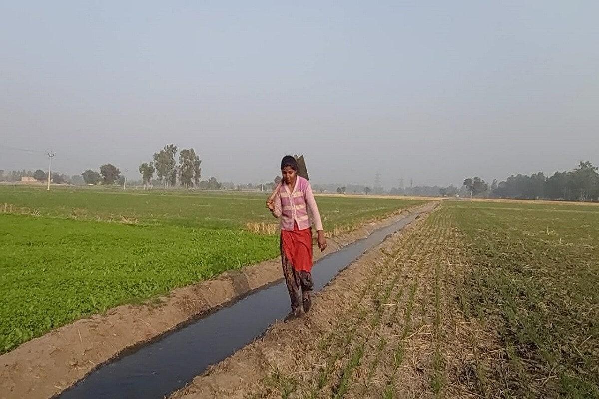 राजधानी दिल्लीमध्ये शेतकऱ्यांचं आंदोलन सुरू आहे. उत्तर भारतातील अनेक राज्यांमधील शेतकरी या आंदोलनात सहभागी झाले आहेत. ज्या वयात अभ्यास करायचा, खेळायचं आणि थंडीच्या दिवसांत रजई ओढून झोपायचं वय असलेल्या या दोन मुलींनी मात्र शेतात कामं करण्यासाठी कंबर कसली आहे.