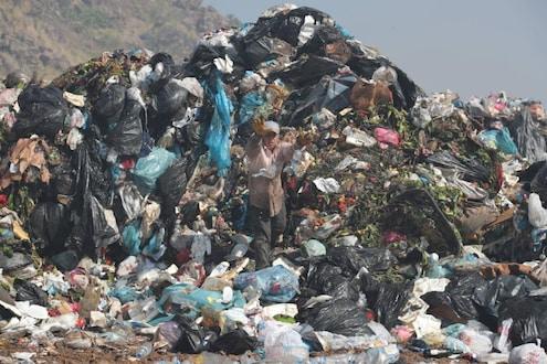 KDMC ची भन्नाट शक्कल! या योजनेतून शहर तर स्वच्छ होईलच पण गरीबांचं पोटही भरेल