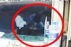 अवघ्या काही सेंकदात चोराने हातातून मोबाईल हिसकावून काढला पळ, सोलापूरचा VIDEO
