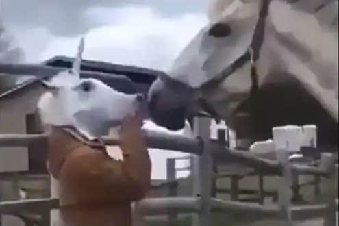 मुखवटा घालून घोड्यासमोर गेला व्यक्ती; पुढे असं काही झालं की...पाहा VIRAL VIDEO