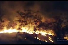 VIDEO: शहापूरजवळील वन क्षेत्राला भीषण आग, मुंबईकडे जाणारी रेल्वे सेवा ठप्प