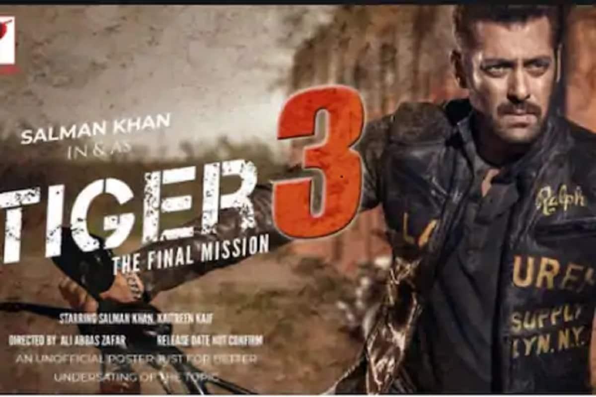 'राधे'नंतर Tiger 3 चं काय? सलमानच्या बहुप्रतीक्षित फिल्मबाबत मोठी माहिती समोर
