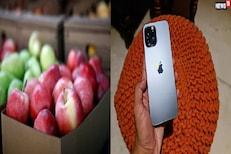 याला म्हणतात LUCK! ऑनलाईन ऑर्डर केले Apple आणि डिलिव्हरीत मिळाला iPhone