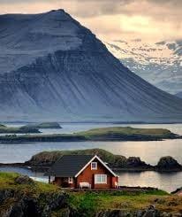 थंड तापमानामुळे आईसलँडमध्ये साप किंवा सरपटणारे प्राणी देखील आढळत नाहीत. याठिकाणी आढळलेला एक डास आइसलँडिक इन्स्टिट्यूट ऑफ नॅचरल हिस्ट्री या प्रयोगशाळेमध्ये संरक्षित ठेवण्यात आलेला आहे